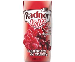 Radnor Fruits Still - Tetra -  Raspberry & Cherry - 24x200ml