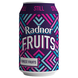 Radnor Fruits Can - Forest Fruits - 24x330ml